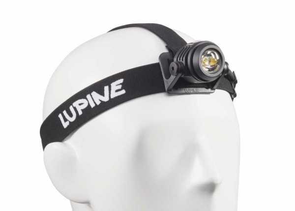 Lupine Head Torche NEO X2